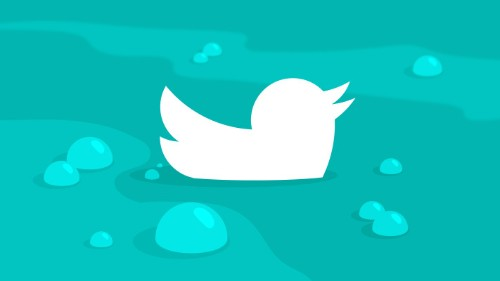 Twitter vows to continue spam fight despite negative impact on user numbers