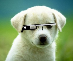 Google Will Now Sell Glass To Anyone In The US Who Wants It, Indefinitely