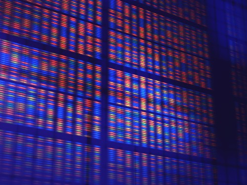 "WuXi NextCODE aims for the genomics database ""gold standard"" with new $240 million"