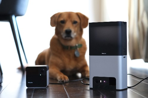 Petcube's Bites 2 and Play 2 amuse pets and humans alike with Alexa built-in