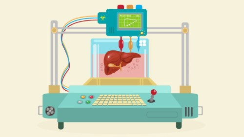 Implantable 3D-printed organs could be coming sooner than you think
