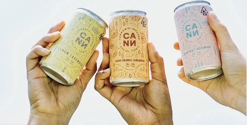 New THC and CBD infused beverage company, Cann, joins the race to replace booze