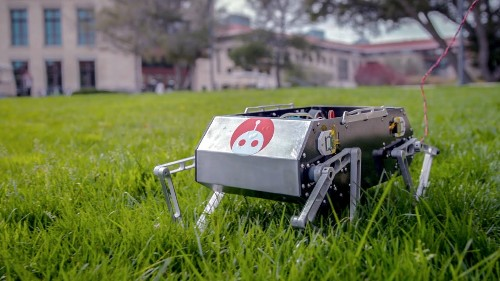 Stanford's Doggo is a petite robotic quadruped you can (maybe) build yourself