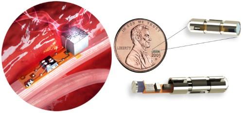 Iota Biosciences raises $15M to produce in-body sensors smaller than a grain of rice