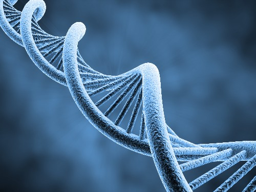 The Genome Engineering Revolution