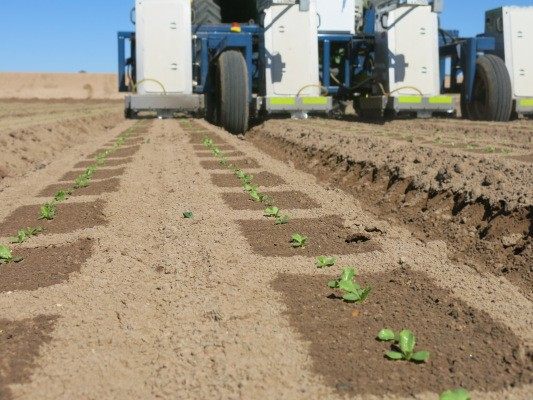 Blue River Technology Takes In Another $10M For Its Agriculture Optimizing Robots