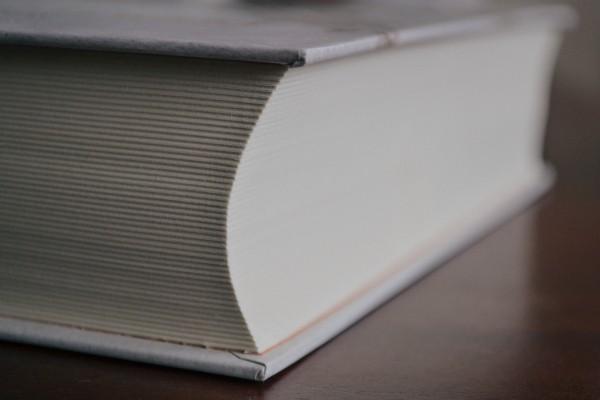 Dictionary app Reverso learns new tricks – TechCrunch