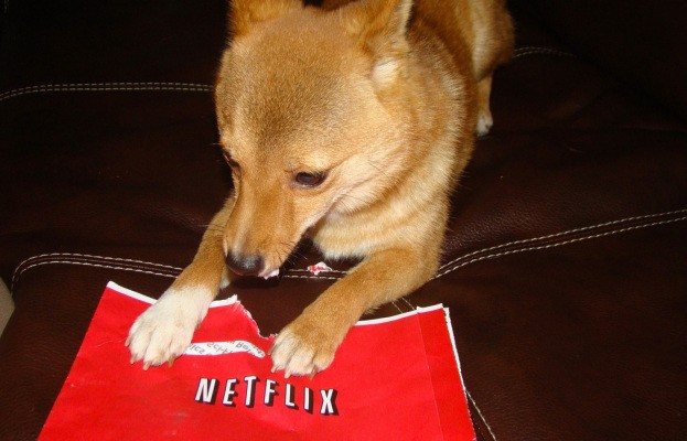 Netflix Says It's Testing New $6.99 Single Screen Streaming Plan, But It May Never Roll Out To Everyone