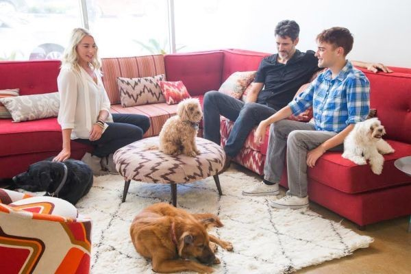 DogVacay, Airbnb For Dogs, Nabs $25M In Funding