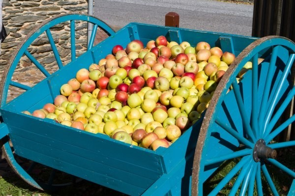 Abundant Robotics rakes in $10 million for apple harvesting robots
