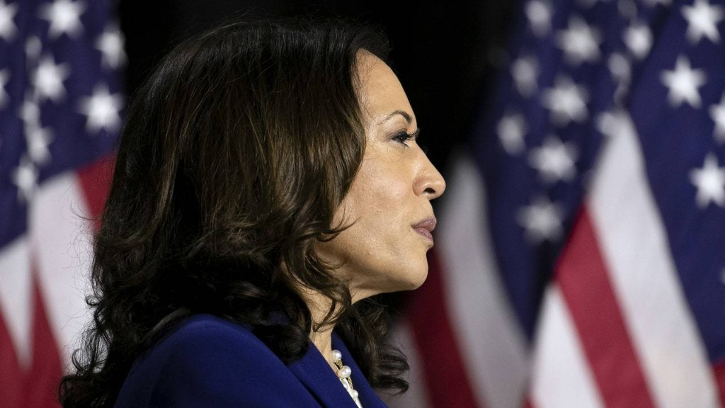2020 Election - cover
