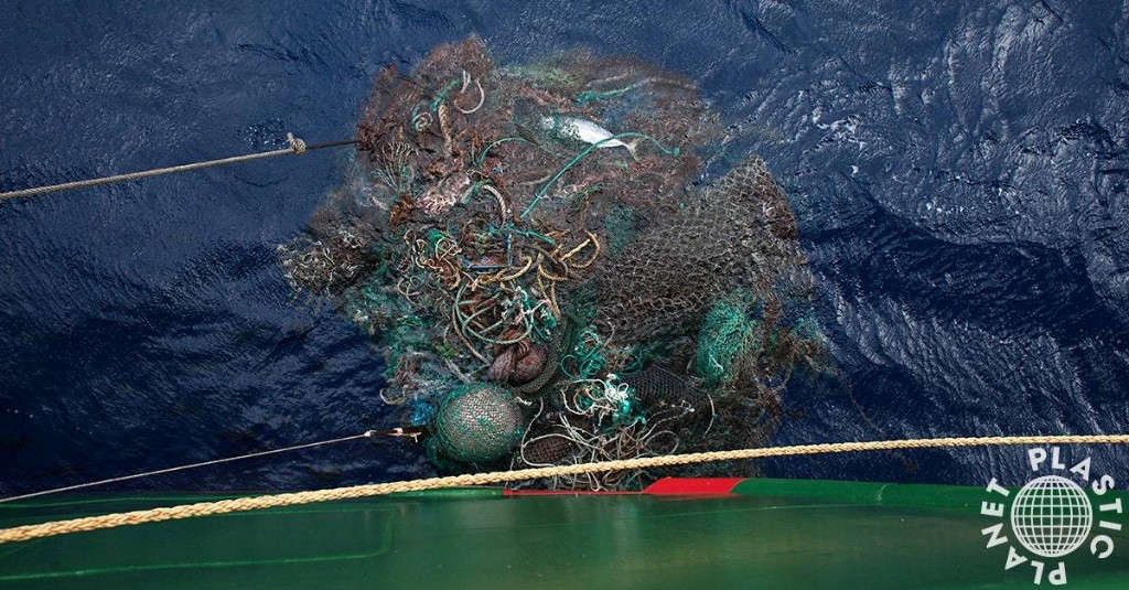 How the Seafood Industry is Polluting the Ocean and Killing Off Marine Life