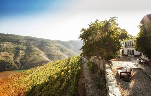 Eight of the best wine tasting spots on a Douro river cruise