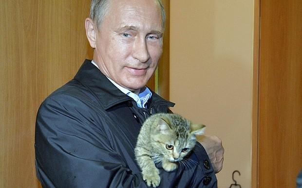 Vladimir Putin confirms Russian military involvement in Syria's civil war