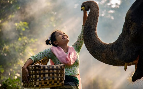 Happiness2020 competition, the happiest photos of the year