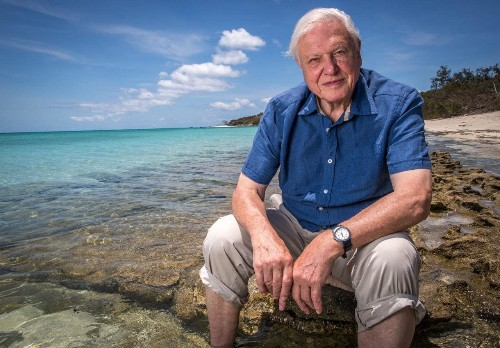 Attenborough at 90: his greatest journeys and how to do them