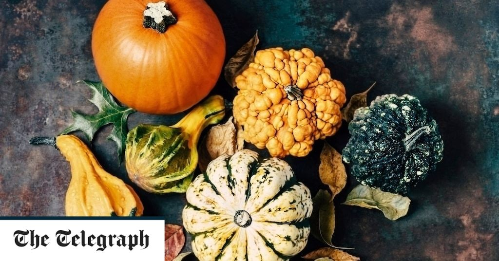 How to grow and carve Halloween pumpkins