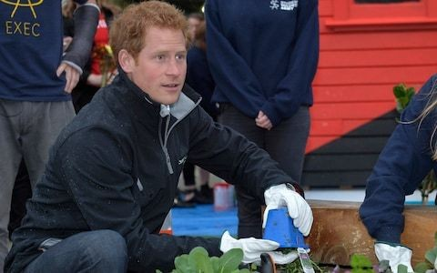 Grow one's own: Meghan and Harry's guide to the ultimate kitchen garden