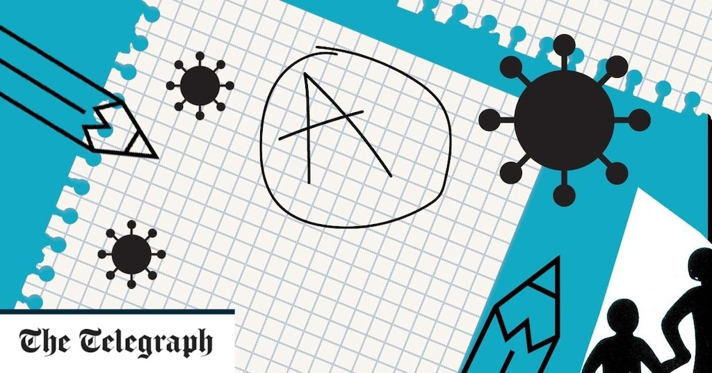A-Levels 2020: Who are the grade-adjusting algorithm's winners and losers?