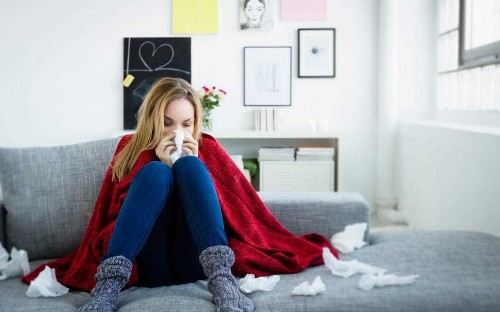 Flu's Who: Everything you've ever wanted to know about cold and flu, answered