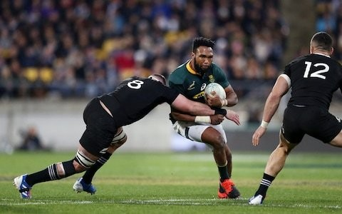 How South Africa have become surprise contenders for World Cup glory