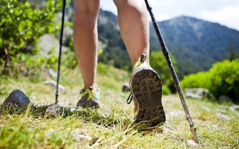 Walking holidays in France: The 12 best companies for French hiking tours