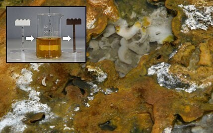 Scientists find medicinal use for sticky prehistoric 'goo' which was Earth's source of life