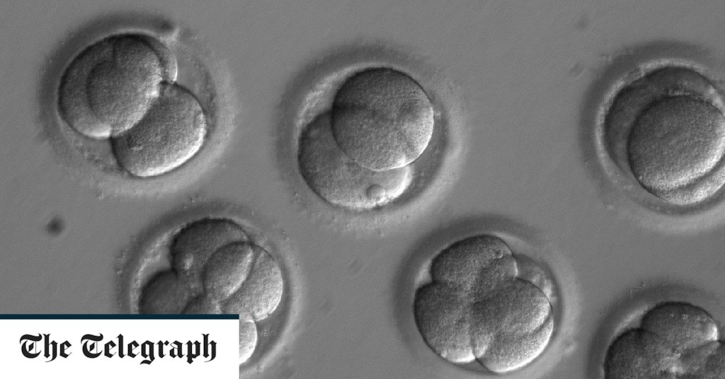 Chinese scientist claims to have created 'world's first genetically edited babies'