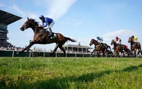Marlborough racing tips for Wednesday, September 11