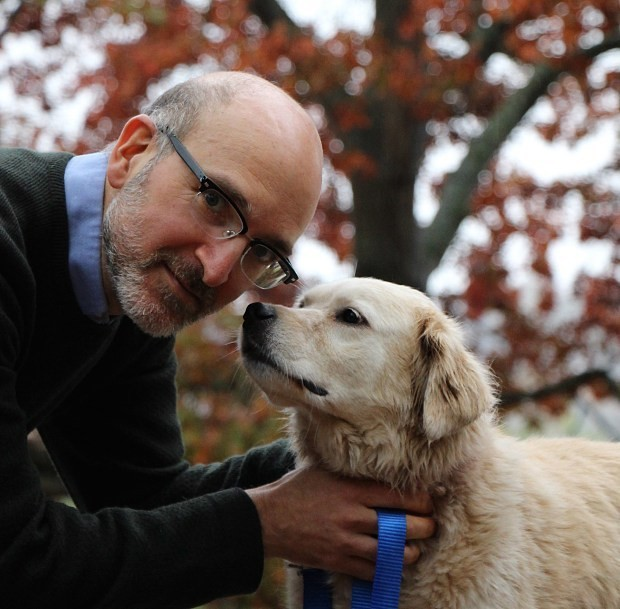 Anti-ageing dog trial could see pets live for an extra four years