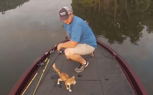 Fishermen catch two kittens in Alabama