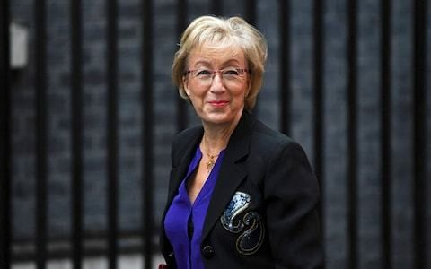 Leadsom prepared to seek new national security pledge on Cobham takeover