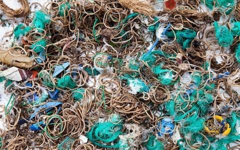 Rubber bands litter remote Cornish island as seabirds mistake ties for worms