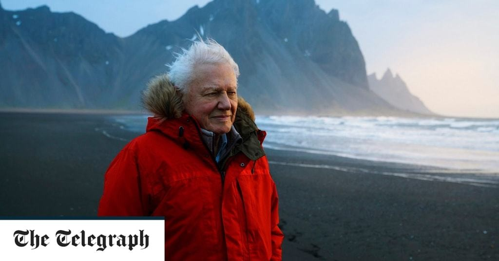 Sir David Attenborough warns Extinction Rebellion risks disenchanting 'an awful lot of people'