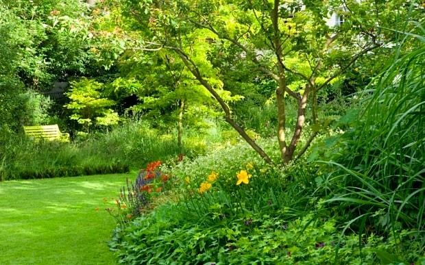 A guide to shady planting