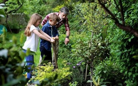 Rewild your child: 11 ideas to get them off the sofa and into nature this half term