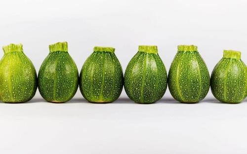 Nine adorable miniature fruit and veg to grow