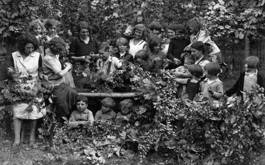 How George Orwell's hop-picking days sowed the seeds for his genius
