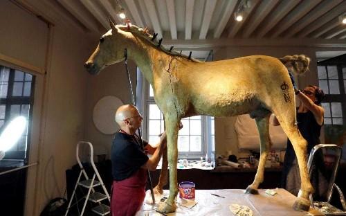 Napoleon Bonaparte's last horse restored to glory