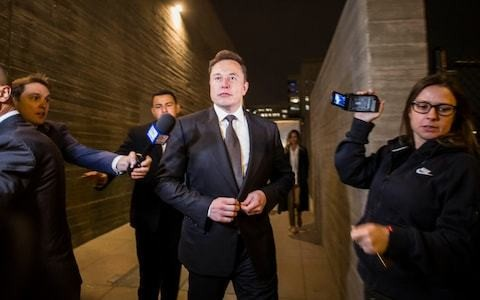 Elon Musk wins defamation lawsuit after calling British cave expert 'pedo guy'