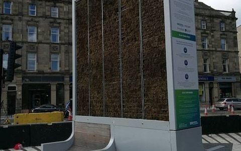 Councils accused of trying to 'reinvent the tree' by installing £16k machines to remove carbon dioxide from the air