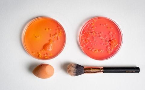 The dirty truth about the bugs in your make-up bag