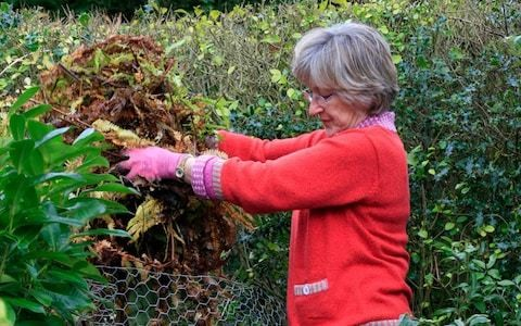 Tips for speedy leaf mould and how to deadhead roses, by garden expert Helen Yemm
