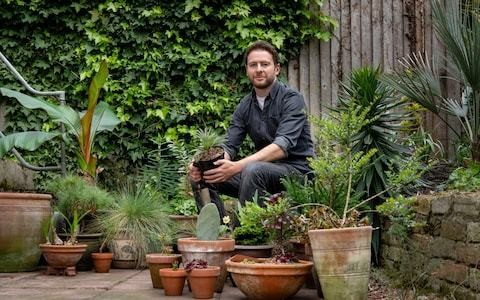 30 ways to improve your garden this bank holiday