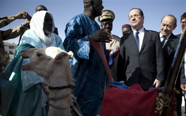 Mali to send Francois Hollande 'bigger and better-looking' camel to replace one that was eaten