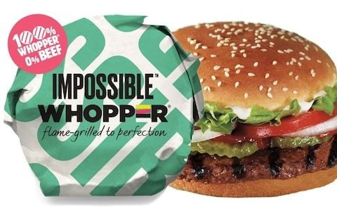 Veggie burger opens new divide in the US