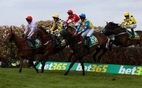 Wayne Hutchinson has no retirement regrets even as he watches old pal Harambe win at Cheltenham