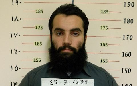 Taliban to free US and Australian professors in prisoner swap to revive peace talks