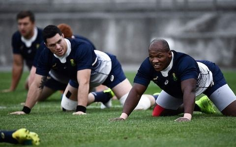 South Africa opt for heavy mob with plan to steamroller Japan