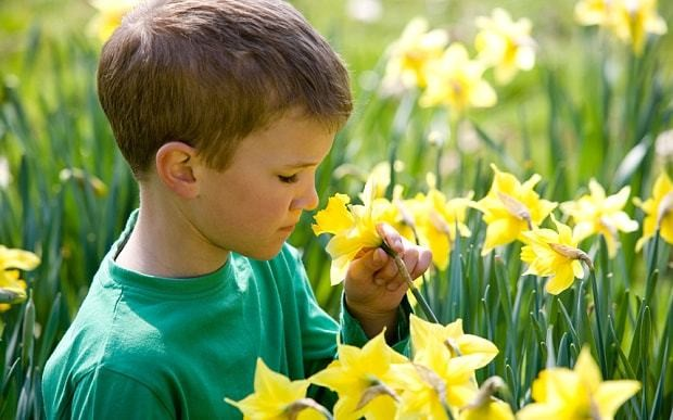Smell test helps detect autism in children